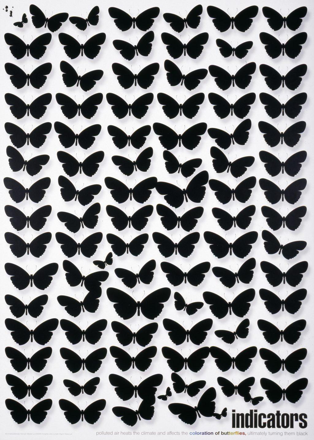Valkoisella pohjalla mustia perhosia.