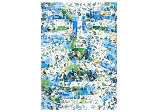 Malva esittelee ympäristöjulisteita Lahden Kirkkopuistossa ja verkkonäyttelyssä